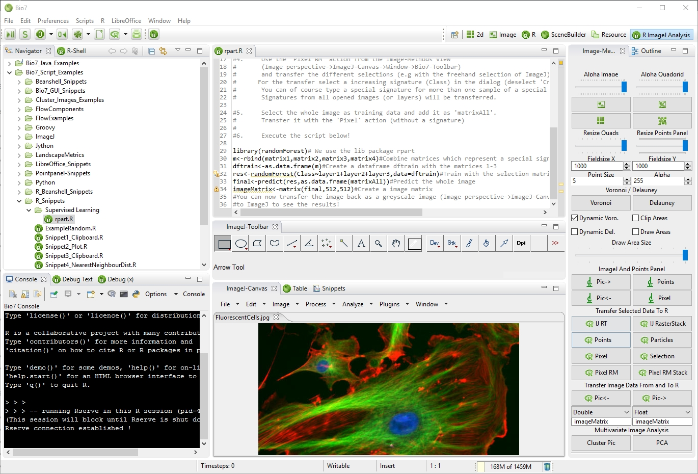 Bio7 2.4 for Windows and Mac Released